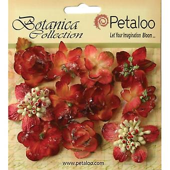 Botanica Sugared Mini Blooms 1.25