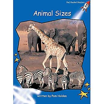 Animal Sizes: Level 3: Early (Red Rocket Readers: Non-fiction Set A)