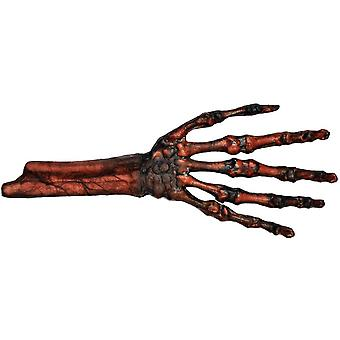 Rotted Flesh And Bone Hand