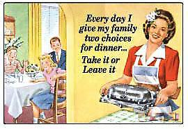 Every Day I give my Family...funny fridge magnet