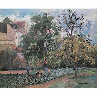 The orchard at Maubuissson,Pontoise Le,Camille Pissarro,50x40cm