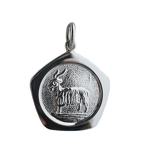 Silver 21mm five sided Capricorn Zodiac Pendant