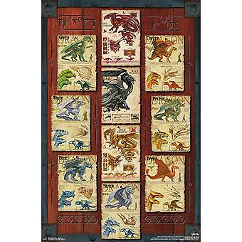 Dungeons and Dragons - Dragon Grid Poster Print