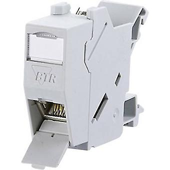 Network outlet DIN rail CAT 6 Metz Connect 1309426003-E Grey-white (RAL 7035)