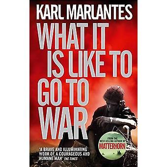O que é gostar de ir para a guerra (principal) por Karl Marlantes - 9780857893802