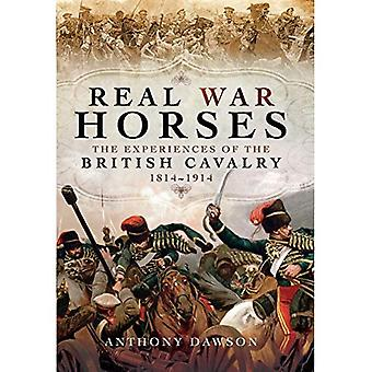 Real War Horses: The Experience of the British Cavalry 1814 - 1914