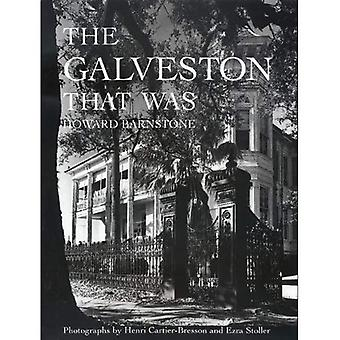 Den Galveston som var (Sara och John Lindsey serie inom konst och humaniora)