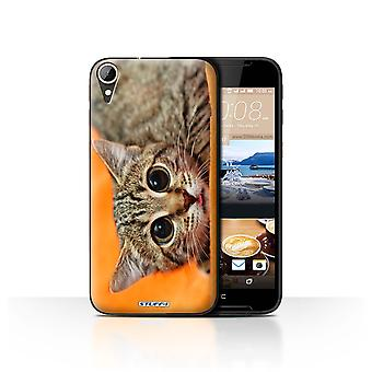 STUFF4 Case/Cover for HTC Desire 830/Big Eye Cat/Funny Animals