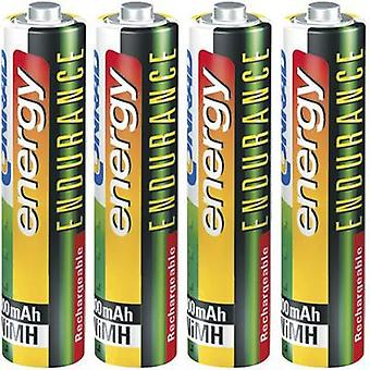 AAA battery (rechargeable) NiMH Conrad energy Endurance HR03 800 mAh 1.2 V 4 pc(s)