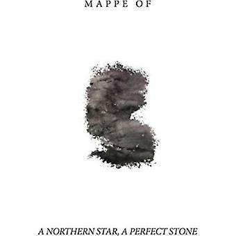 Webtjenestekomponenter af - Northern Star en perfekt sten [Vinyl] USA importerer