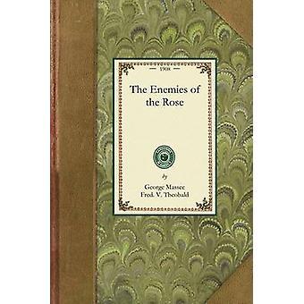 Les ennemis de la Rose par Massee & George
