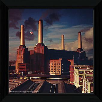 Pink Floyd zwierząt oprawione Album pokrycie druku 12x12in