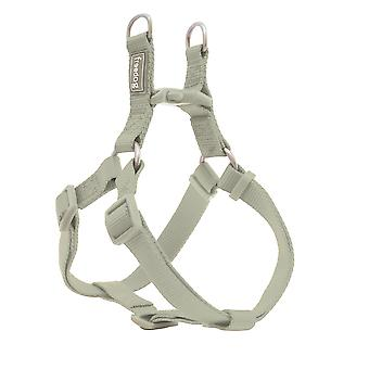 Freedog Arnés Nylon Basic Tipo A Verde Salvia (Dogs , Walking Accessories , Harnesses)