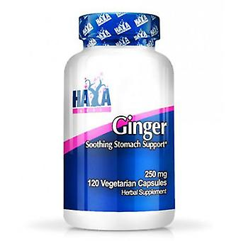 Haya Labs Ginger 250mg. 120 V Capsules (Sport , Others)