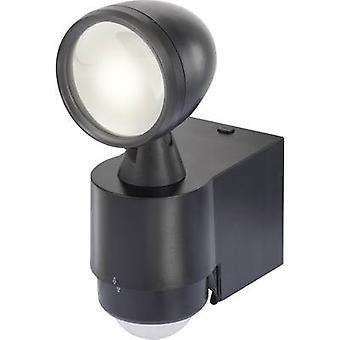LED outdoor floodlight (+ motion detector) 1 W Neutral white Renkforce