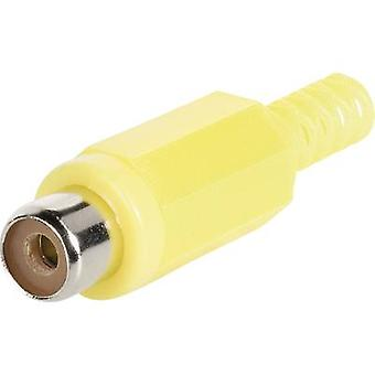 Connecteur RCA BKL électronique 072210/T prise, droite nombre de broches: 2 rouge 1 PC (s)