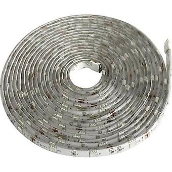 Tira de LED de Licht Müller set + enchufe 12 V 500 cm neutro blanco Bandeau à LED 300 LED 4000K 57002