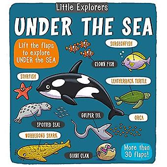 Little Explorers: Under the� Sea (Little Explorers)