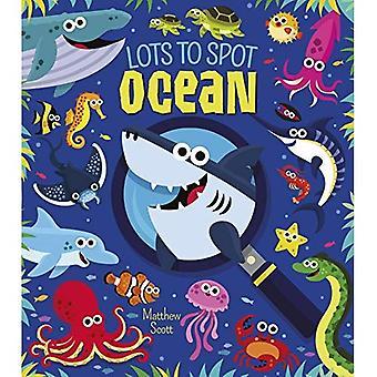 Ci sono un sacco di Spot: oceano
