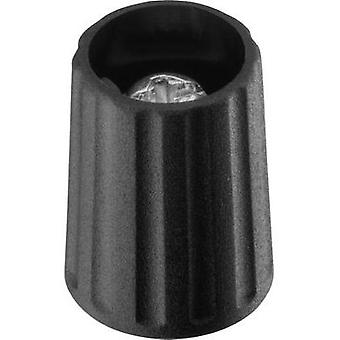 Control knob Black (Ø x H) 10.1 mm x 13.7 mm Ritel 26 10 30 3 1 pc(s)