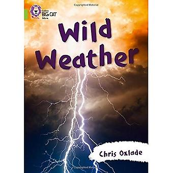 Collins Big Cat - Wild Weather: Band 11/Lime