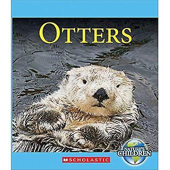 Otter (Kinder der Natur)