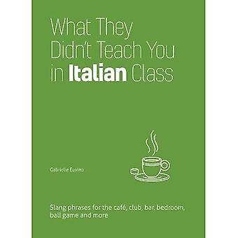 What They Didn't Teach You� in Italian Class: Slang Phrases for the Cafe, Club, Bar, Bedroom, Ball Game and More