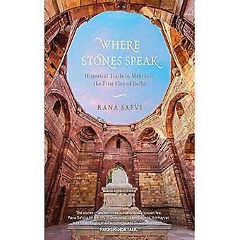 Hvor stenene taler: Historiske forsøg i Mehrauli, den første by i Delhi