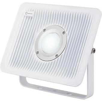 LED outdoor floodlight 50 W Cold white Renkforce 1361117 Grey