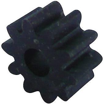 Wood, Plastic Cogwheel Modelcraft Module Type: 1.0 No. of teeth: 10 1 pc(s)