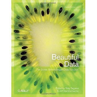 Schöne Daten: Die Geschichten hinter den eleganten Datenlösungen