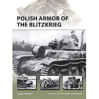 Polska rustning av Blitzkrieg (nya Vanguard)