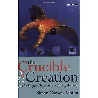 The Crucible of Creation: The Burgess Shale and the Rise of Animals