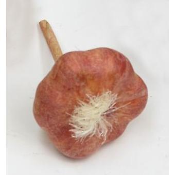 Artificial Garlic