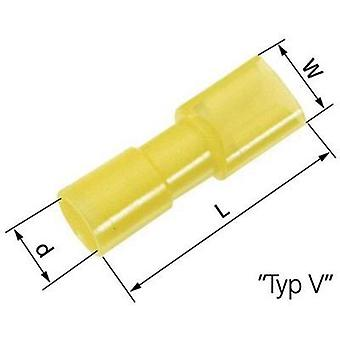 Blade receptacle Connector width: 6.3 mm Connector thickness: 0.8 mm