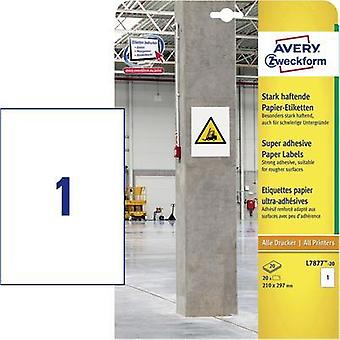 Avery-Zweckform L7877-20 Labels (A4) 210 x 297 mm Paper White 20 pc(s) Permanent, Strongly adhesive Adhesive labels (ext