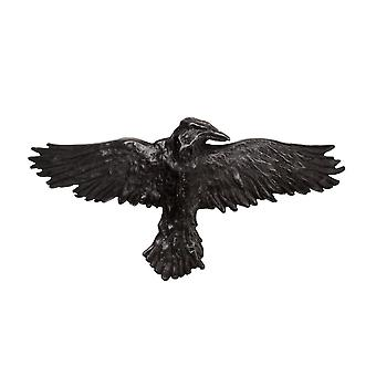 Pince à cheveux corbeau noir alchimie