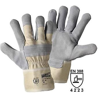 worky 1511 Size (gloves): 8, M