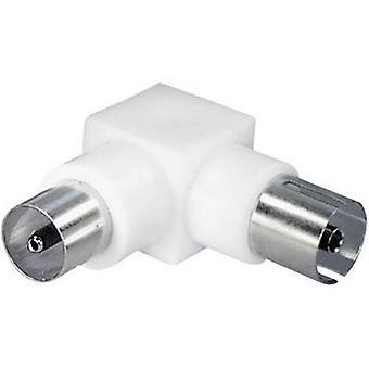 Antenna adapter[Belling-Lee/IEC plug 75Ω-Belling-Lee/IEC socket 75Ω] WhiteRenkforce