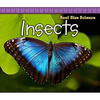 Insects (Real Size Science)