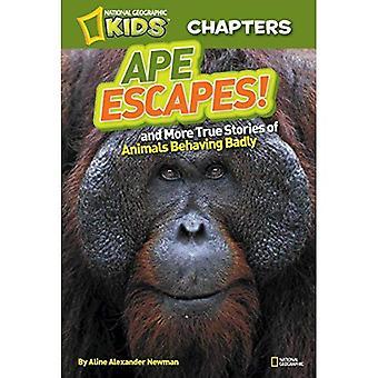 National Geographic Kids capitoli: Ape Escape!: E altre storie vere di animali si comportano male