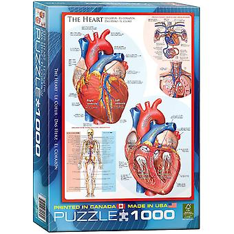 The Heart 1000 piece jigsaw puzzle 680mm x 490mm  (pz)