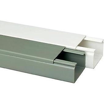 Conducto (L x W x H) 2000 x 60 x 40 mm Heidemann 09982 1 PC blanco puro