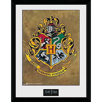 Harry Potter Hogwarts oprawione Collector Print