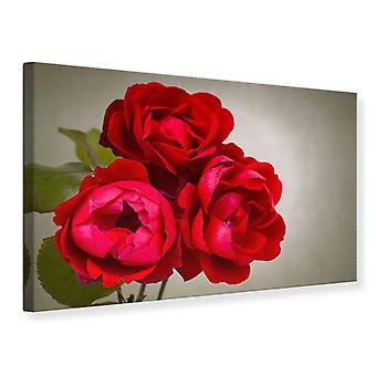 Lærred Udskriv tre røde roser