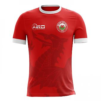 2018-2019 Wales Home Concept voetbalshirt