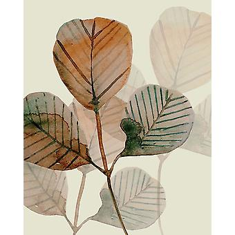 Brown Leaves 2 Poster Print by Boho Hue Studio