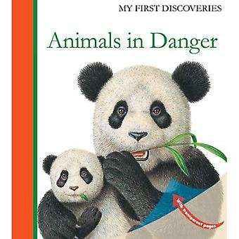 Animals in Danger (My First Discoveries)