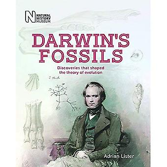 Darwin's Fossils: Discoveries that shaped the� theory of evolution