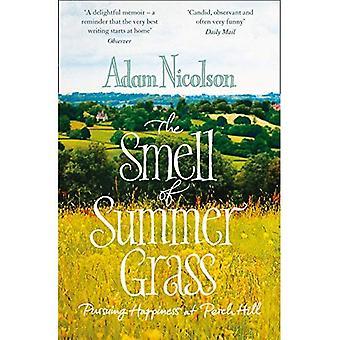 Odeur de l'herbe l'été: poursuite de bonheur à la colline du perche